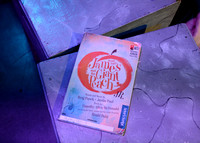 James and the Giant Peach http://www.stageworkshouston.org/